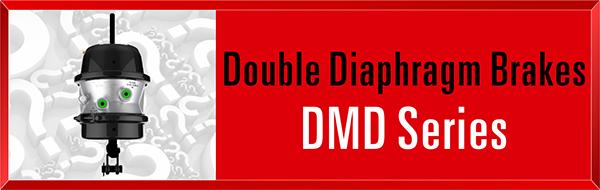 Category-DMD